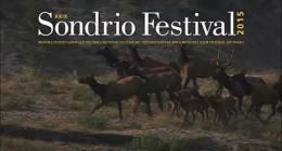 Spot SondrioFestival 2015